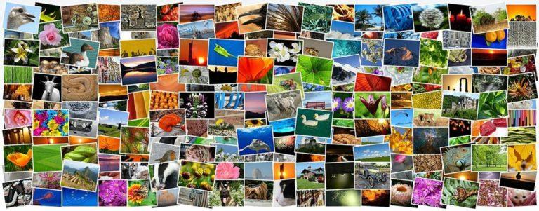 Proste i szybkie wywoływanie zdjęć online