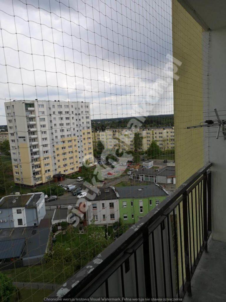 Czy siatka na balkon przeciw ptakom jest pomocna?